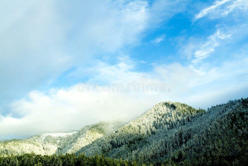 snöig berg arkivbild