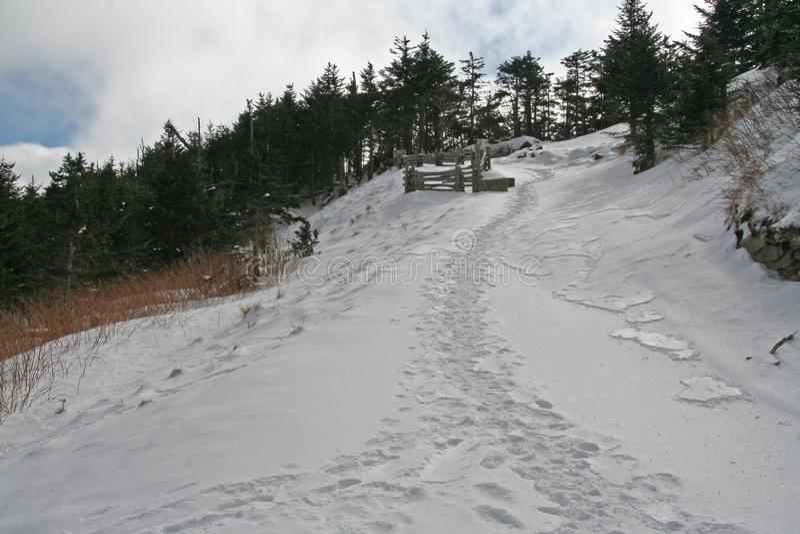 Snöig berg med spår som är stigande i Ashevillen North Carolina arkivfoto