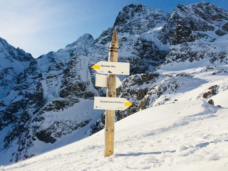 Snöig berg på en solig dag i vinter royaltyfri fotografi