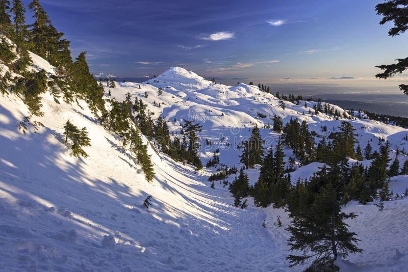 Snöig berg Seymour Winter Landscape ovanför Vancouver F. KR. Kanada royaltyfri foto
