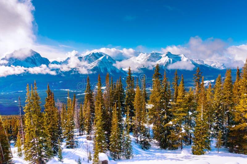 Snöig berglandskap av de kanadensiska steniga bergen i vinter arkivbild