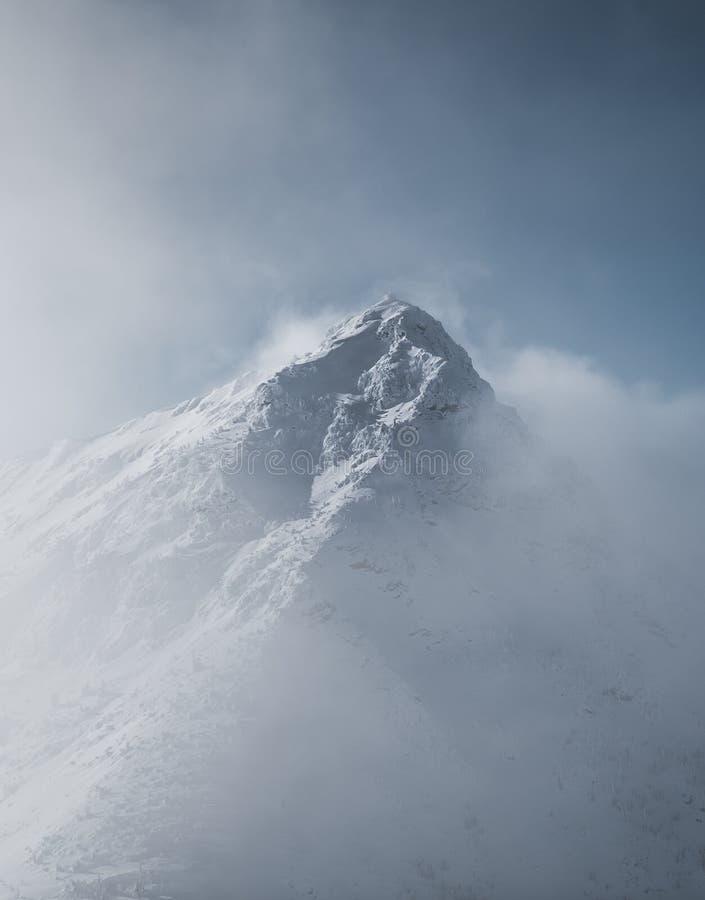 Snöig berglandskap i molnigt väder nära Rossland område royaltyfri fotografi