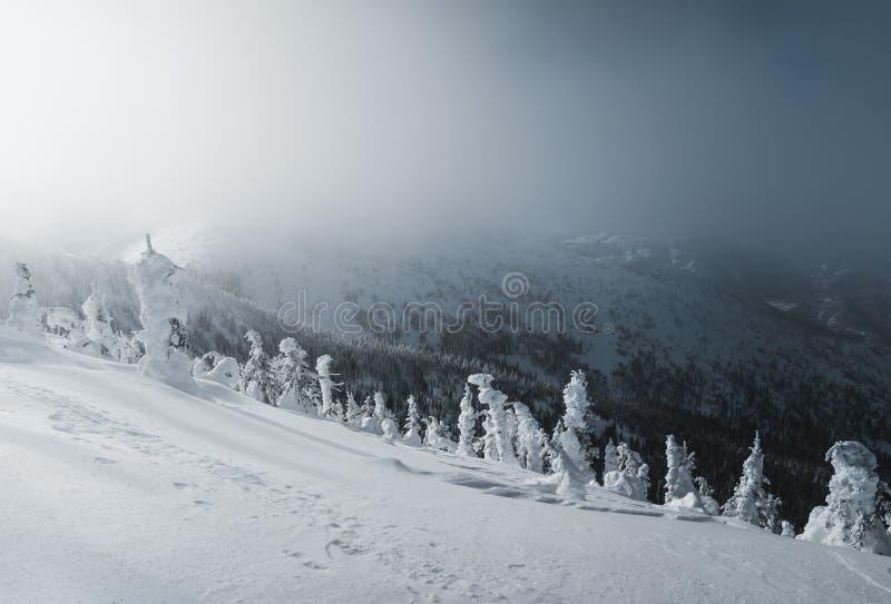 Snöig berglandskap i molnigt väder nära Rossland område arkivfoto