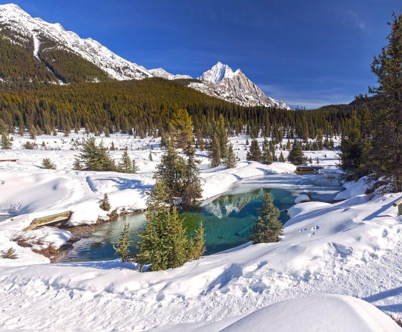 Snöig bergmaximum blåa krukor Johnston Canyon Springtime Banff National för färgpulver för sjön parkerar kanadensiska steniga ber royaltyfri fotografi
