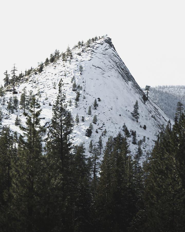 Snöig bergstopp nära Lake Tahoe - Hogsback som klättrar område på vänner, hoppar royaltyfri fotografi
