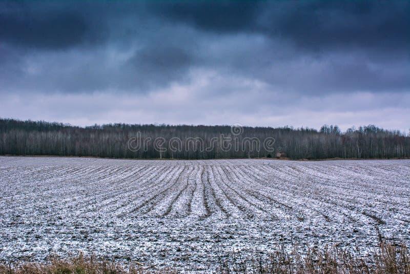 Snöig bondefält i vinter royaltyfri bild