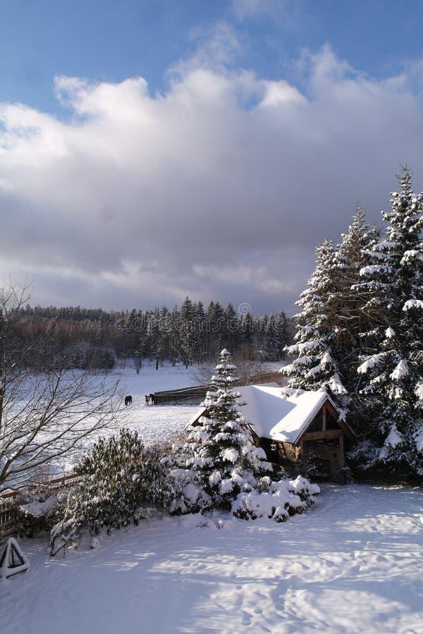 Snöig bygd royaltyfri bild