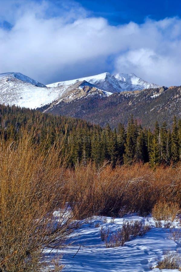 snöig colorado berg royaltyfria bilder
