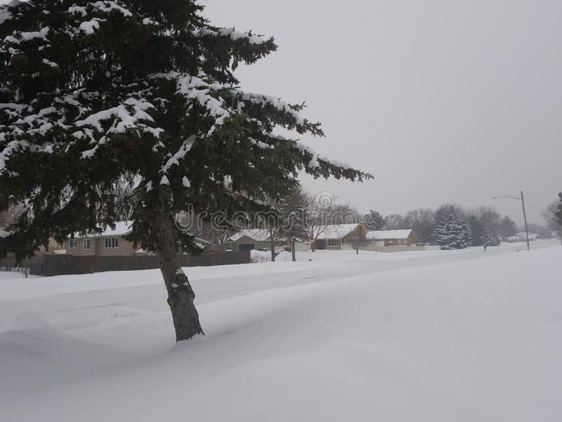 snöig dag royaltyfri foto