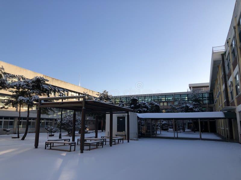 Snöig dag på högstadiet royaltyfri bild