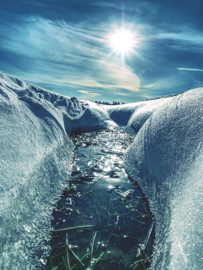 Snöig djupfryst gräs i insnöat vinterlandskap arkivbild