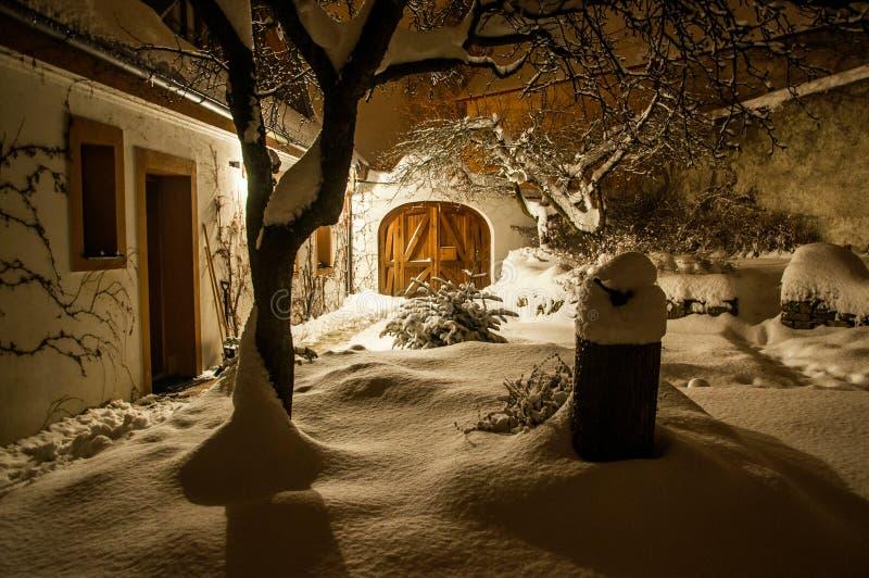 Snöig fairytailträdgård i vinter fotografering för bildbyråer