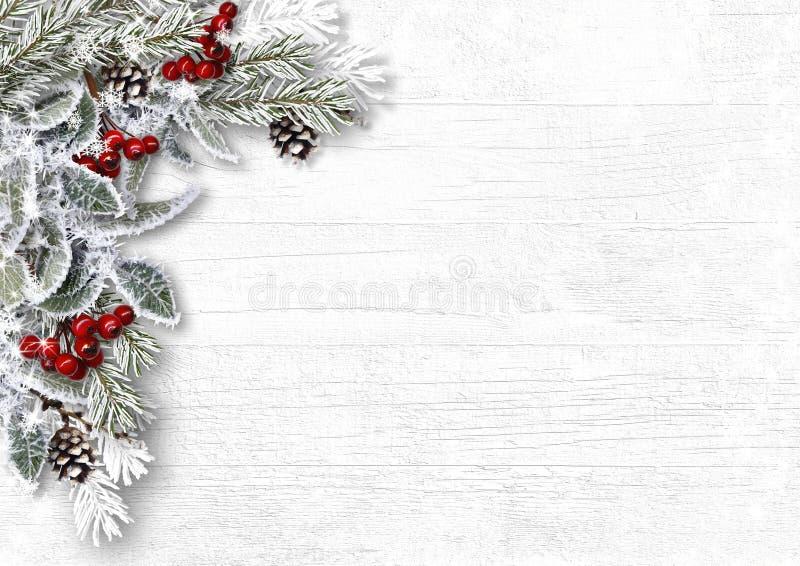 Snöig filialer för jul med järnek och kottar på vit träbaksida arkivbilder