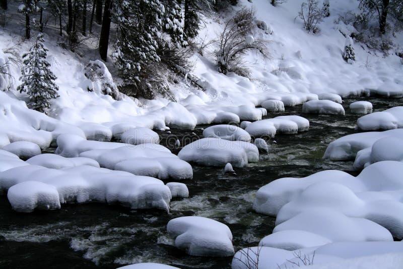 snöig flod 6 royaltyfri bild
