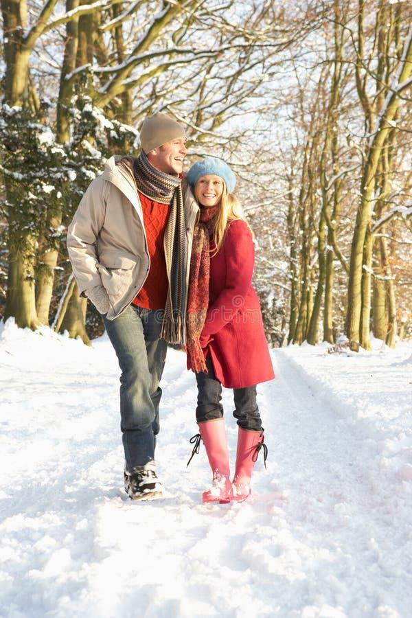 snöig gå skogsmark för par royaltyfri fotografi