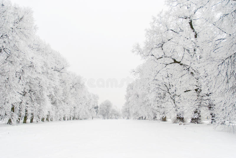 Snöig gränd arkivfoto