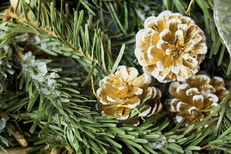 Snöig granträd med gran-kotten Traditionellt rörelse- nytt år och jul för hälsningkort arkivfoto