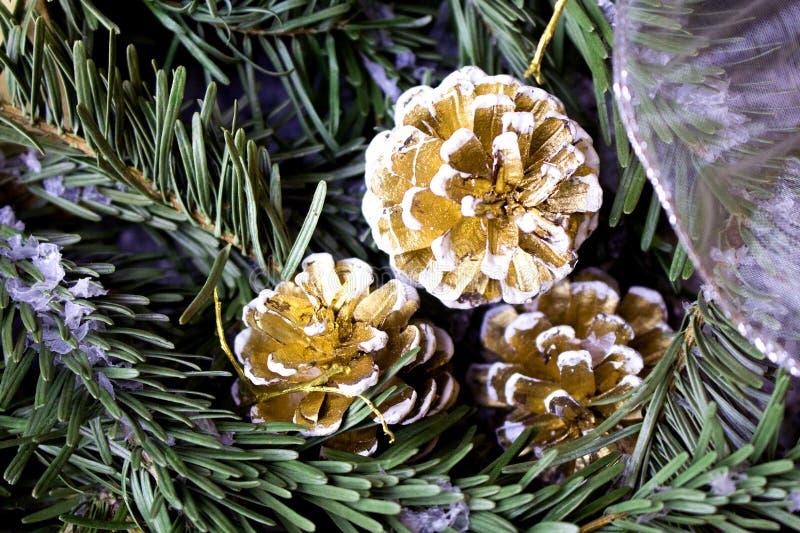 Snöig granträd med gran-kotten vinter för blåa snowflakes för bakgrund vit royaltyfria bilder