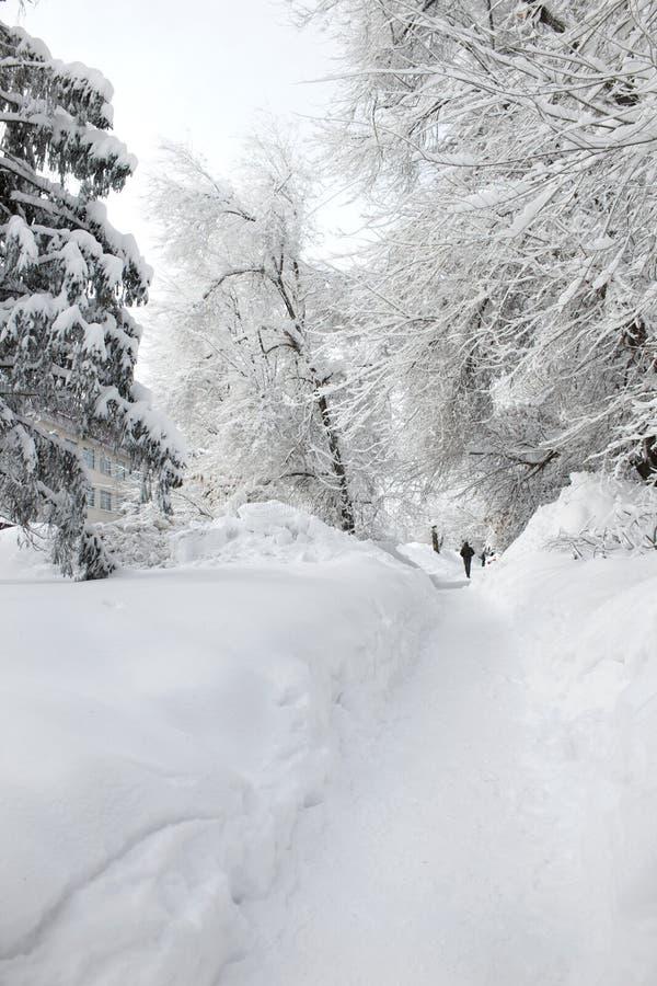 Snöig hård vinter i staden av Saratov, isdrivor royaltyfri foto