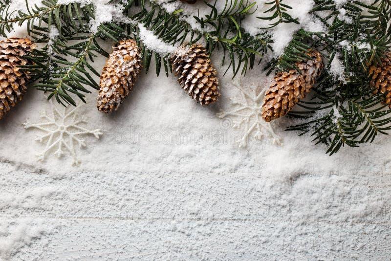 Snöig julbakgrund med granfilialen och sörjer kottar royaltyfria bilder