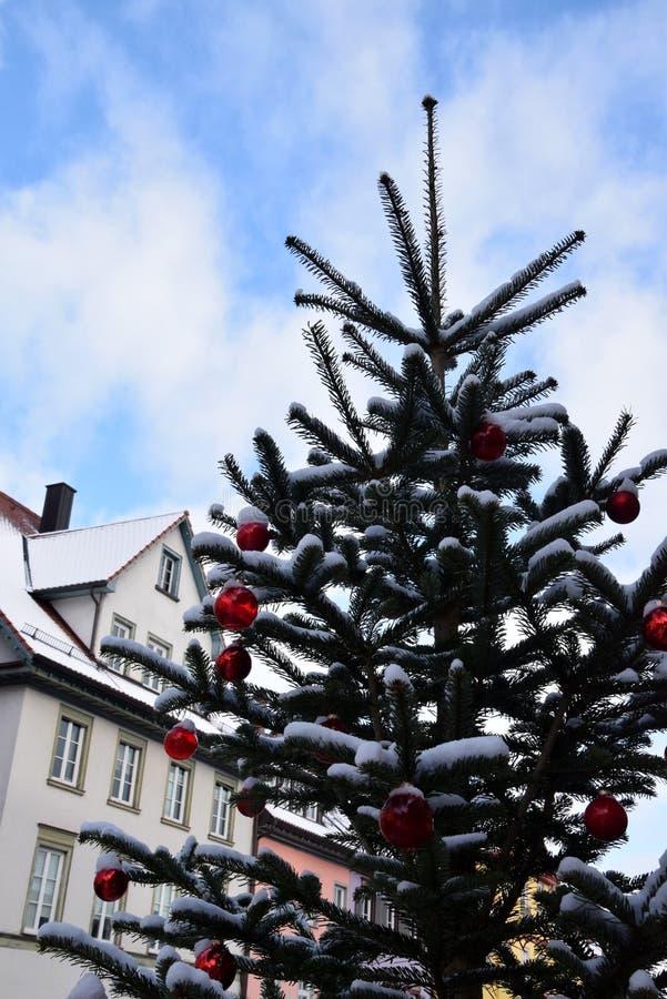 Snöig julgran med röd garnering i utomhus- royaltyfria foton