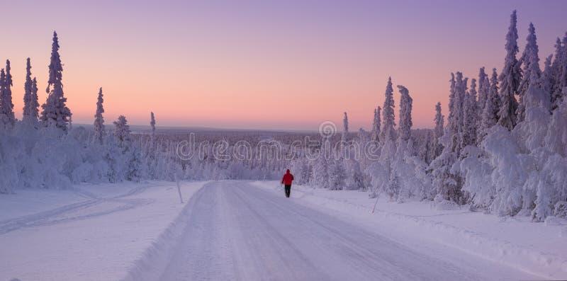 Snöig landskap från Finland, Lapland arkivbilder