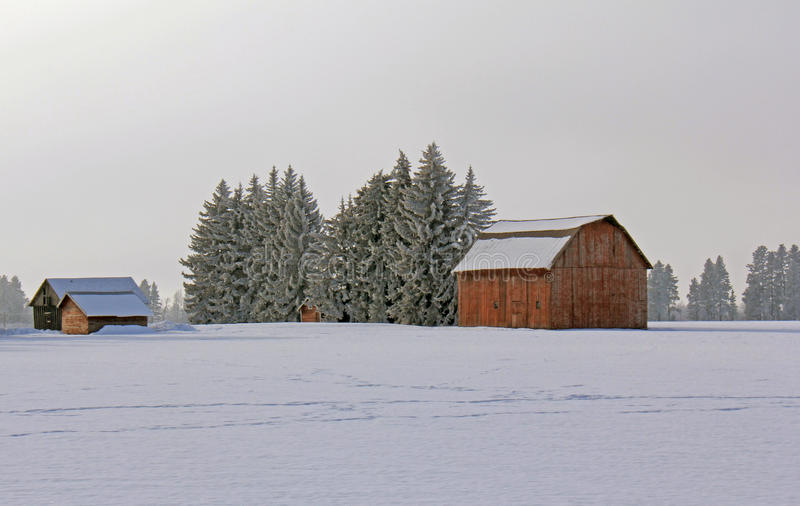 snöig lantgård 2 arkivbilder