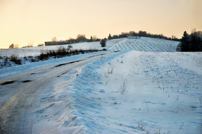 Snöig lantligt landskap på solnedgången royaltyfri foto