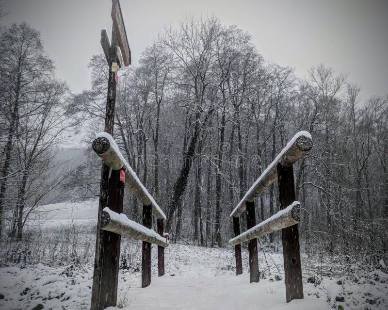 Snöig liten träbro i vinter arkivbilder