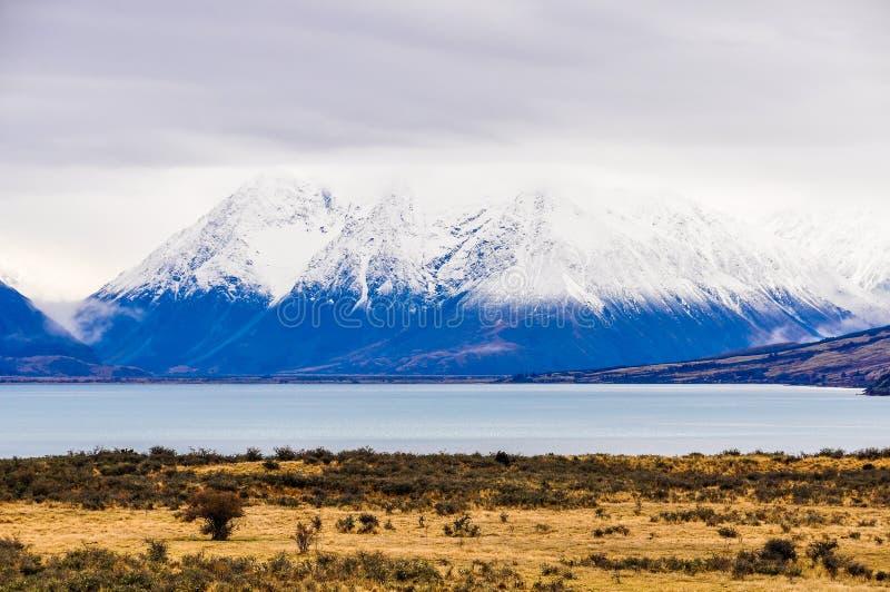 Snöig maxima near sjön Ohau, Nya Zeeland royaltyfri fotografi