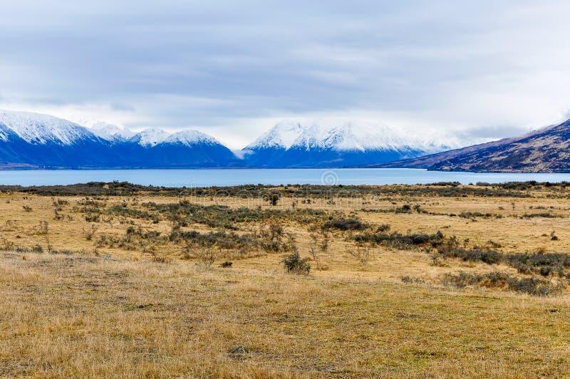 Snöig maxima near sjön Ohau, Nya Zeeland fotografering för bildbyråer