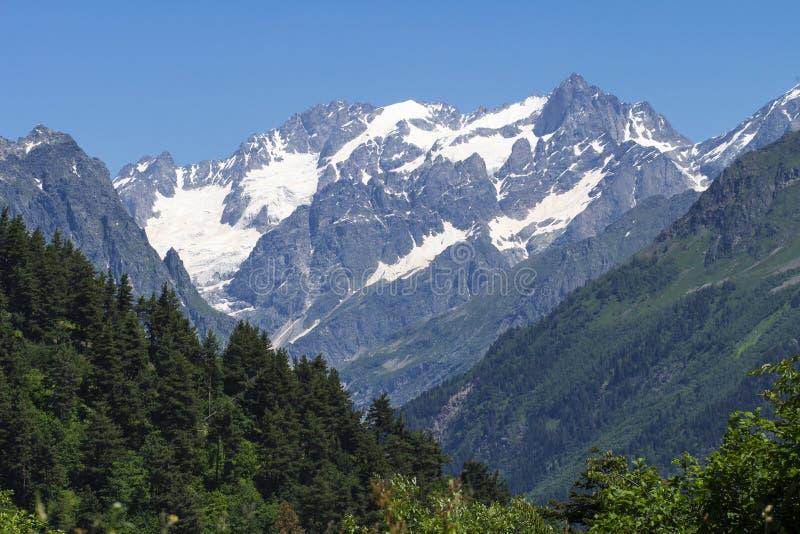 Snöig maxima och skog för steniga berg på bakgrund för blå himmel på solig sommardag Kaukasus monteringar stora liggandebergberg arkivfoto