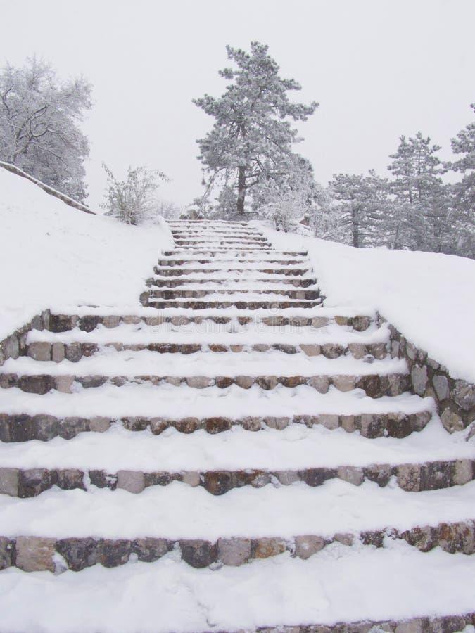 snöig moment för tunga snowfall arkivfoto