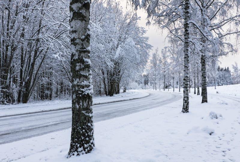Snöig motorisk väg arkivbilder