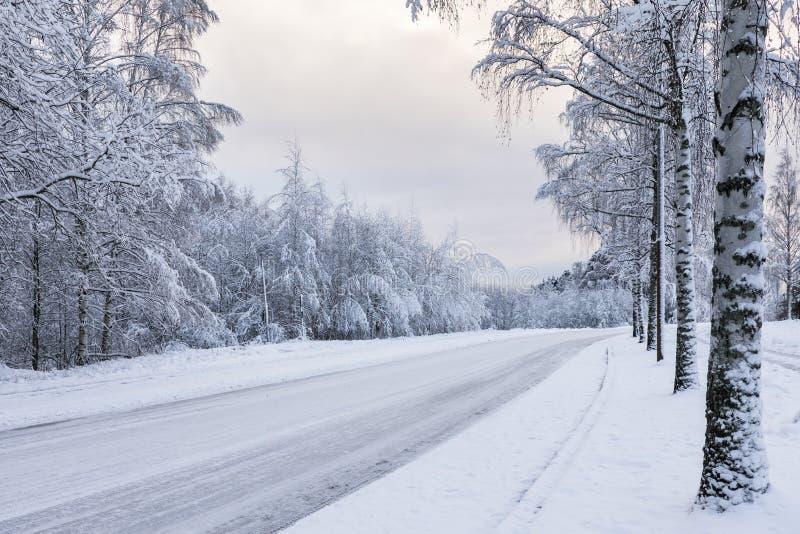 Snöig motorisk väg royaltyfria bilder