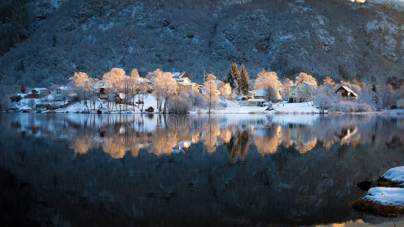 Snöig och färgrika glänsande träd och hus reflekterade i Haukeland sjön i förorterna av Bergen i vinter royaltyfri bild