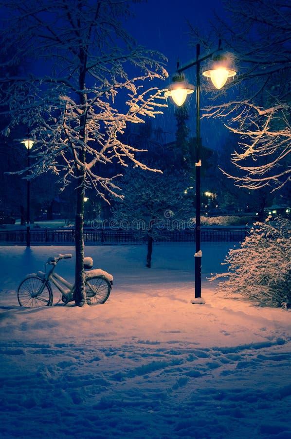 Snöig park som tänds på natten arkivfoto