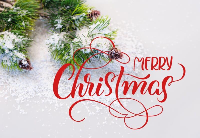 Snöig sörja filialen med kottar och glad jul för text Bokstäverkalligrafi arkivfoto