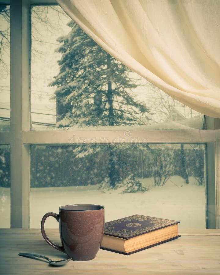 Snöig sikt arkivfoto