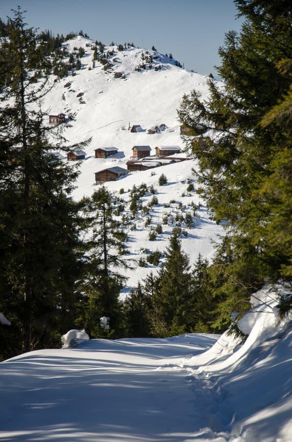 Snöig sikt av Salplatån i Rize, Turkiet royaltyfri foto