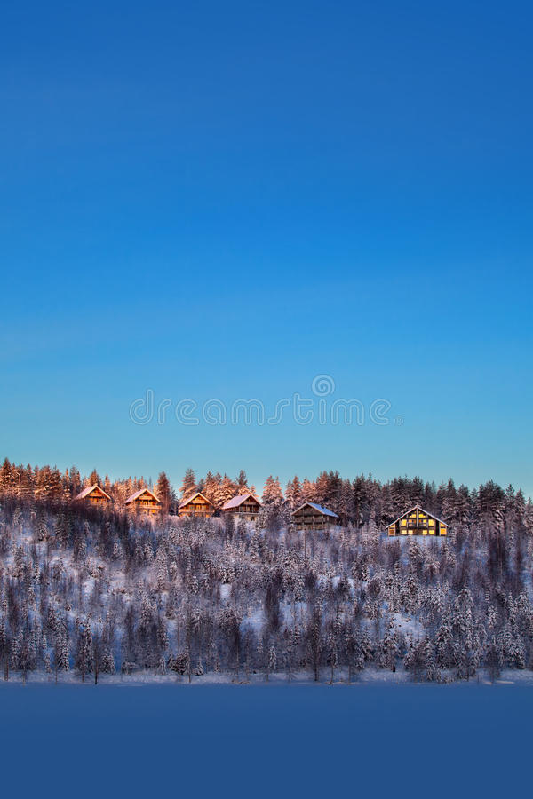 Snöig skog och varmt solljus royaltyfria foton