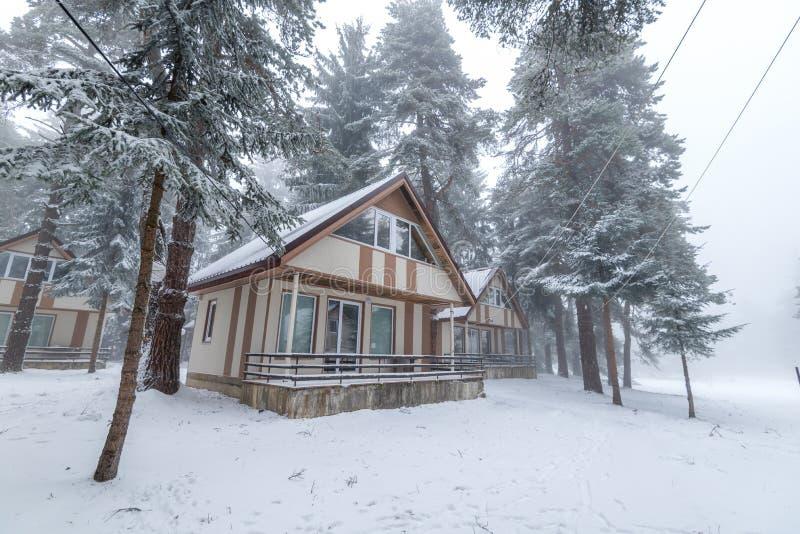 snöig skoghus arkivfoton