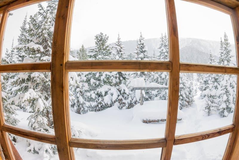 Snöig skogträd i snön utanför fönstret med ett trä arkivbild