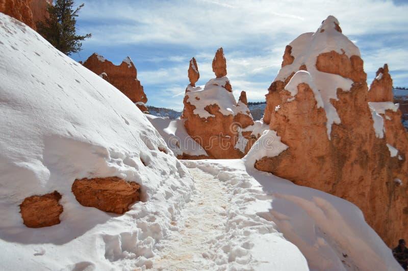Snöig slinga i Bryce Canyon, Utah royaltyfria bilder