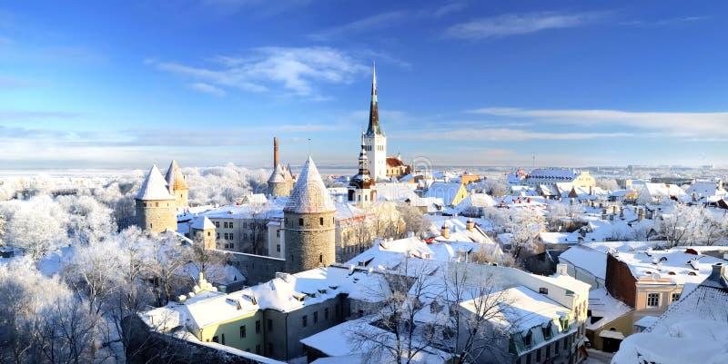 Snöig stad royaltyfri bild