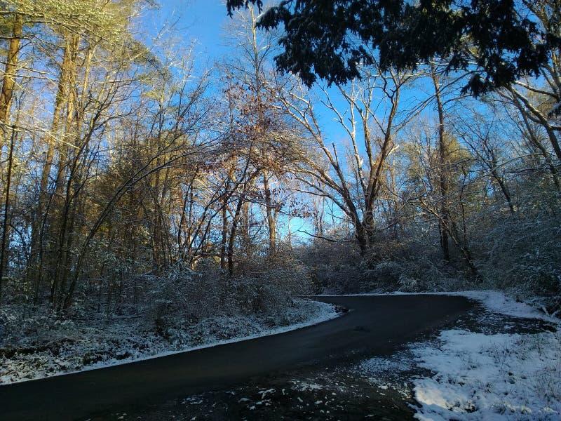 Snöig ström fotografering för bildbyråer
