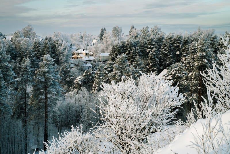 Snöig träd och stugor i skog på den soliga dagen royaltyfria bilder