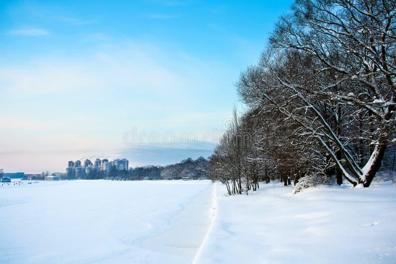 snöig trees för djupfryst flod arkivfoton