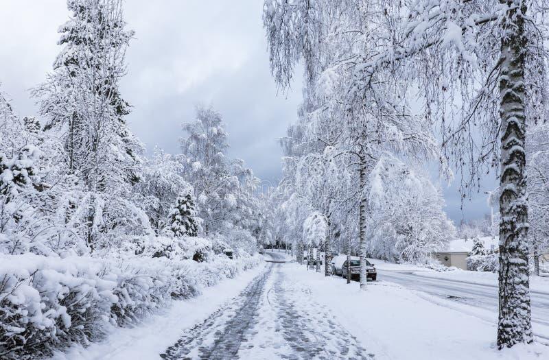 Snöig trottoar royaltyfri bild