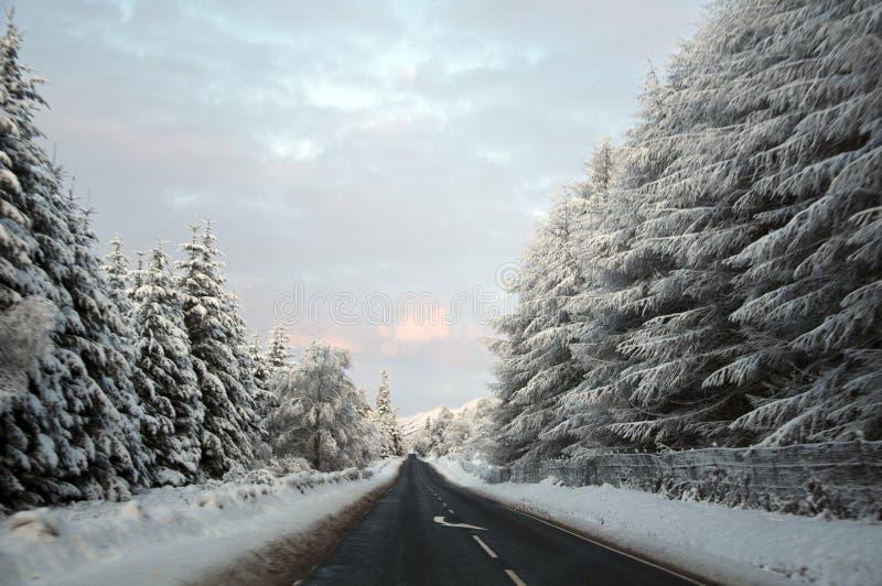 snöig väg royaltyfri fotografi